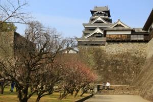 熊本城の梅の花 039